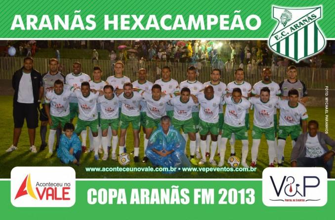 poster_campeao_copa_aranas_menor