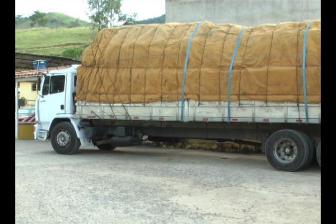 transporte_ilegal_116_12_02_2