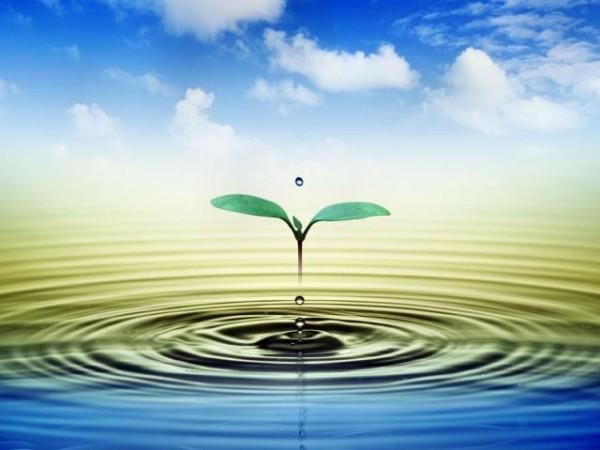 Resultado de imagem para água vida