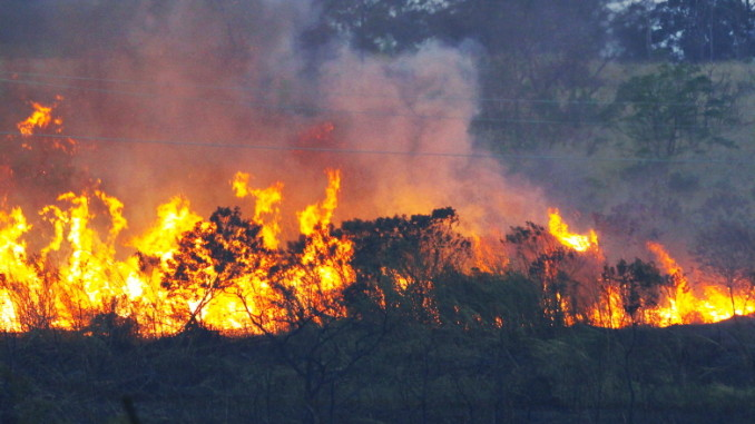 queimada_aguas_formosas