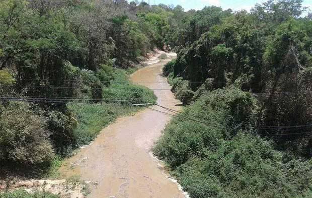 rio_verde_grande_jaiba