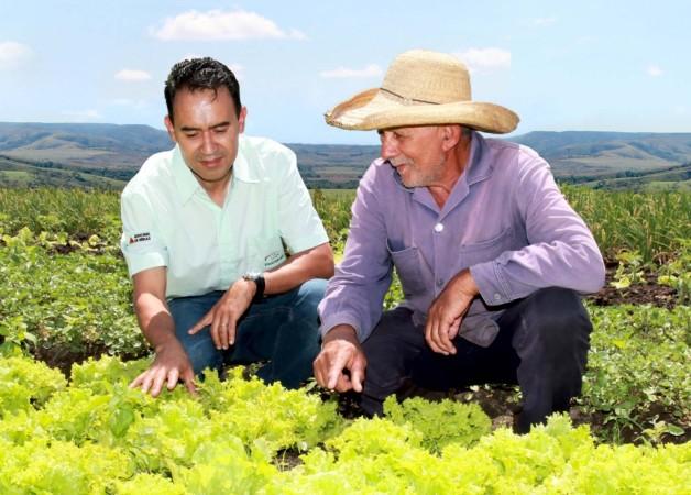 emater-mg-completa-66-anos-com-atendimento-a-400-mil-familias-de-agricultores-no-estado