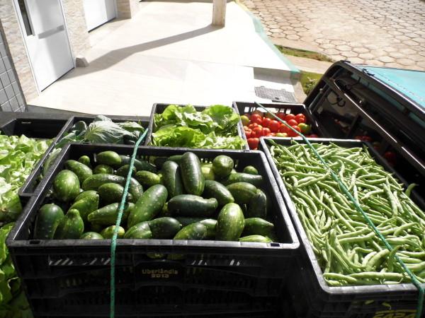 emater-mg-vai-orientar-mais-de-8-mil-agricultores-para-o-fornecimento-de-alimentos-para-o-pnae
