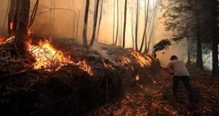 incendio_portugal
