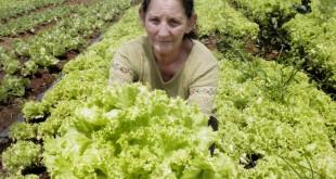 mulher_rural_producao_1