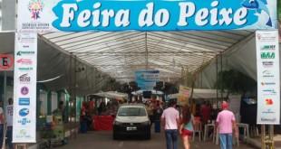 feira_do_peixe_teo_2