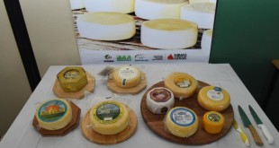 queijo_minas_artesanal