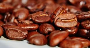 cafe_mg