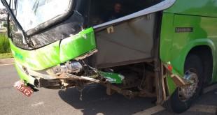 acidente_passaro_verde_3
