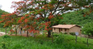 quilombo_lagoagrande
