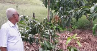 fruticultura_galileia