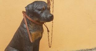 cachorro_plastico_1