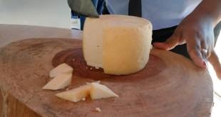 queijo_porteirinha